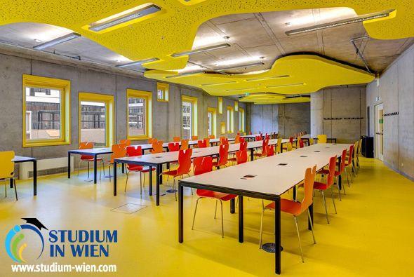 Венский Экономический Университет сегодня состоит из 16 научно-исследовательских подразделений, 11 академических департаментов и 3 центров повышения квалификации