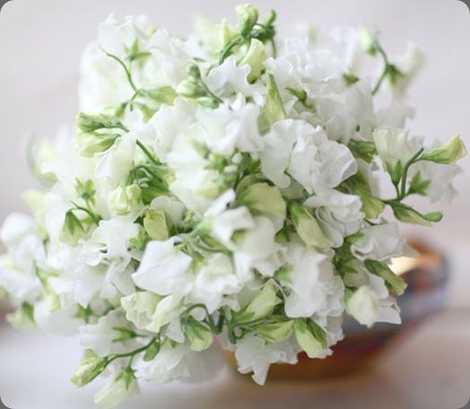 6a0120a5914b9b970c0133ec9c398c970b-800wi sweet pea bridal bouquet florali