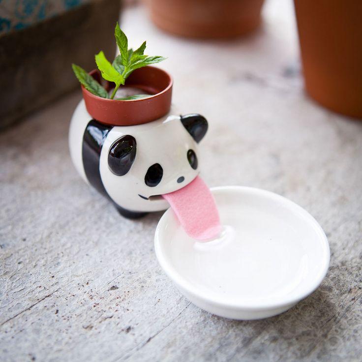 Dans notre collection Plante-Animal, voici le petit nouveau Peropon ! Décorez…
