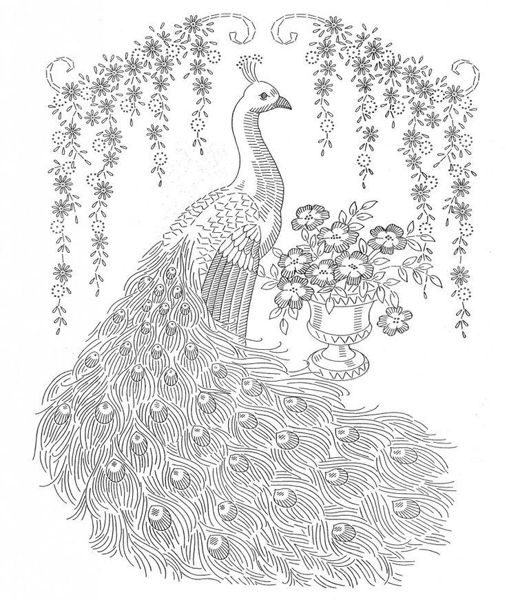 Laura-Wheeler-Transfer-1022-Peacocks