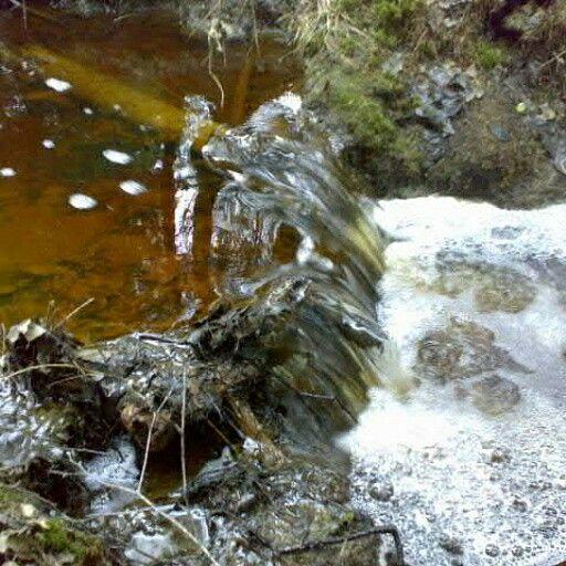 A tiny waterfall.