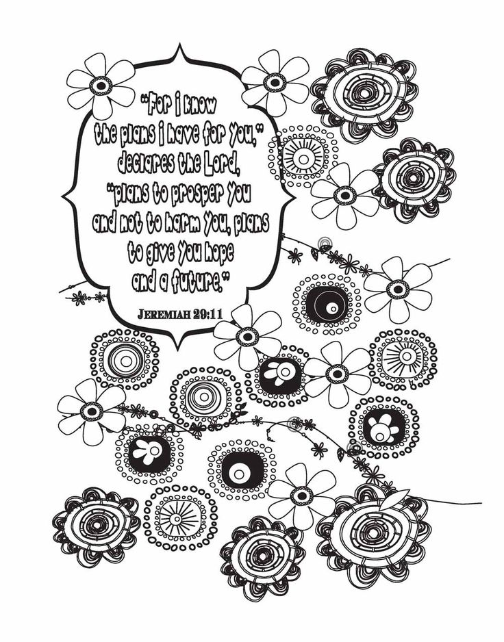 Coloring Book For Adults Study 17 Best Images About Amazon Samples On Pinterest