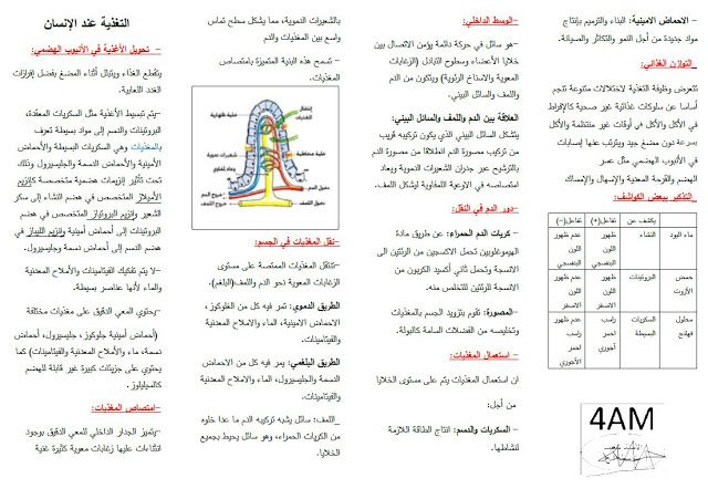 ملخص شامل في العلوم الطبيعية للسنة الرابعة متوسط للاستاذ شعيب | Learn  arabic online, Learning arabic, Me quotes