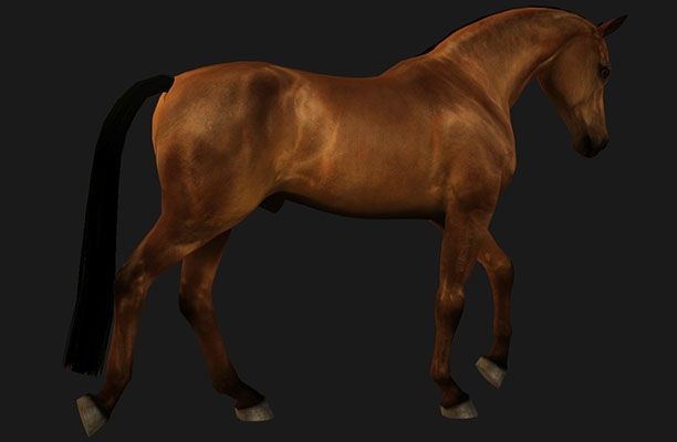 thinner straight cut tail - by Alastair Schrödinger @ Equus Sims