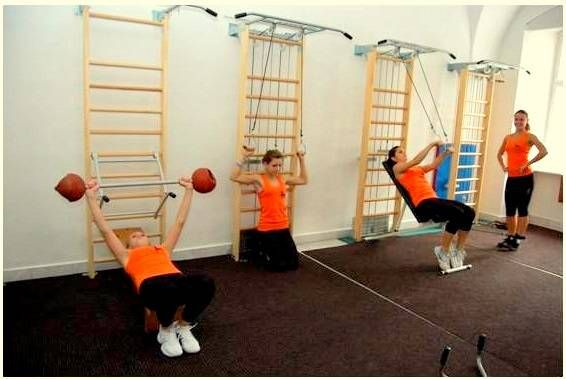 Swedish Ladder For Exercise Products Wall Bars