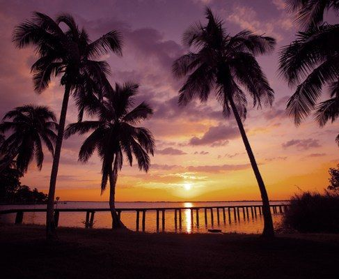 Top 10 to See and Do in Fort Myers & Sanibel, Florida