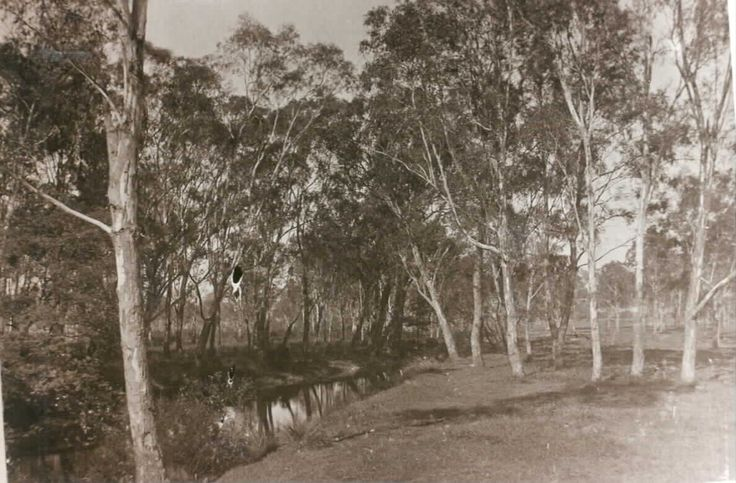 MP 7560. Gardiners Creek; 1895.