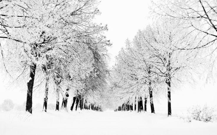 vinter natur - Google-søk