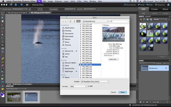 cool edit pro registration key download