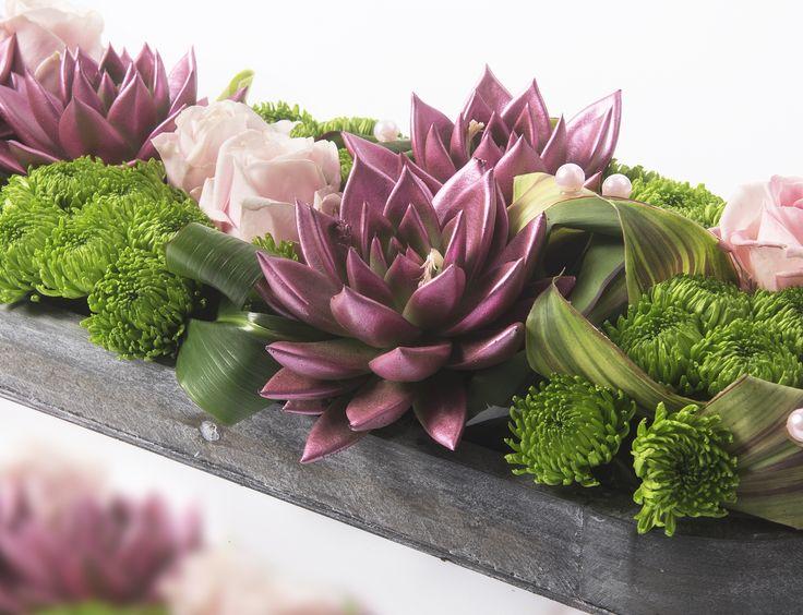 Arrangement with echeveria miranda and chrysanthemum.