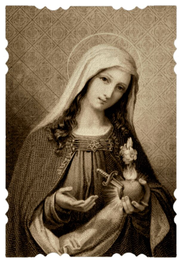 Our Lady Of Lourdes, Pray For Usnovena To The Immaculate