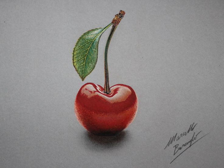 Cherry DRAWING by Marcello Barenghi by marcellobarenghi on DeviantArt