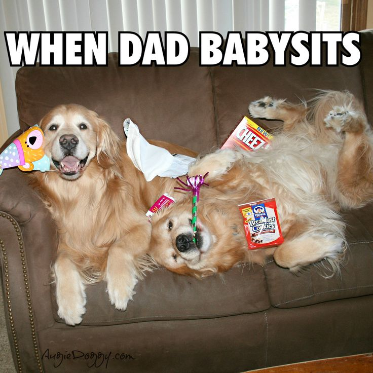 Look familiar? :) (or when grandpa is home with them)