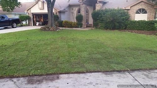 Bay Hill Sod Service From The Ground Up bring many reputable years of experience in the Bay Hill sod service industries to the table. We are known for outstanding service and professional expertise with Bay Hill sod installation and Bay Hill…