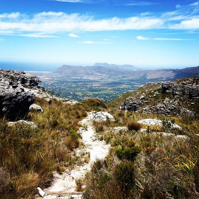 8. Arguably one of the most scenic routes of hiking Table Mountain is Skeleton Gorge. While the trails's first half is largely limited to forested…