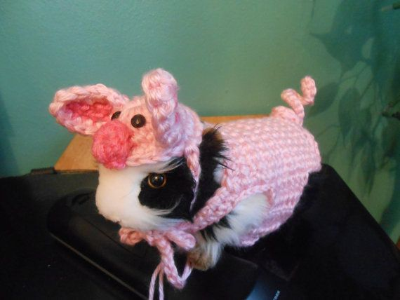 Guinea pig Farm pig Sweater and pig Hat  Guinea pig by Fancihorse