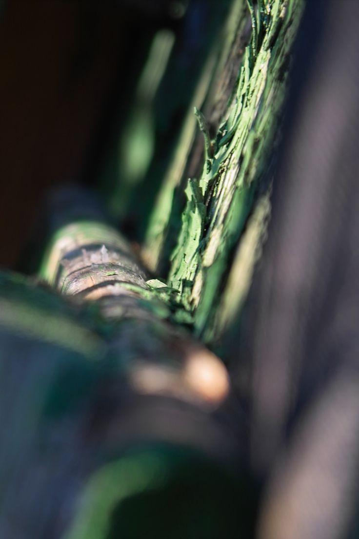 Innere Strukturen in Grün und Weiß