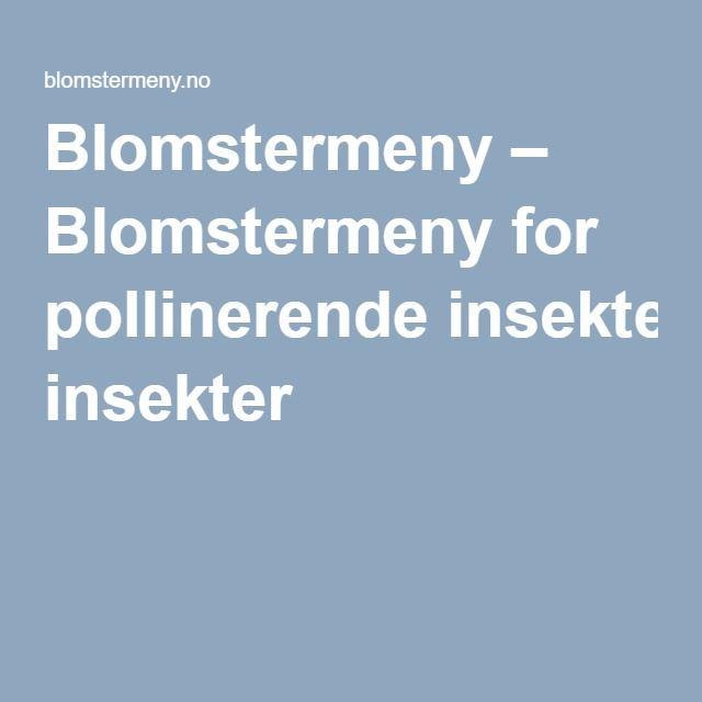 Blomstermeny – Blomstermeny for pollinerende insekter