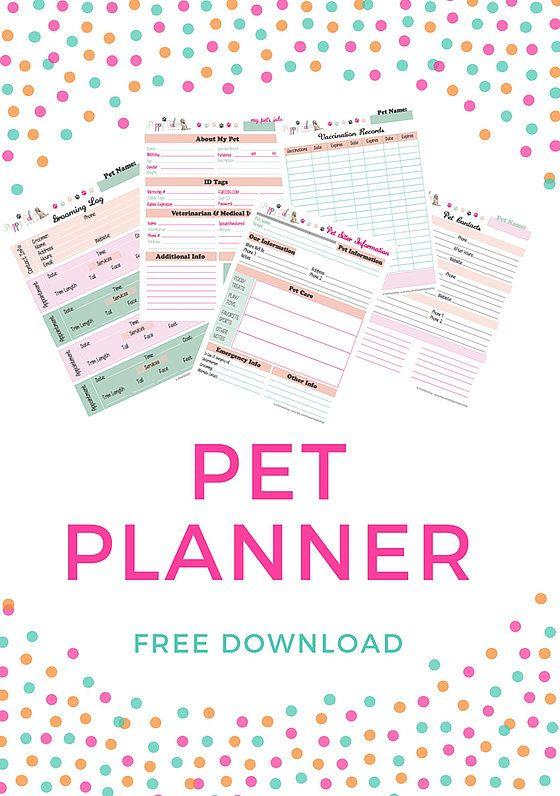 Pet Sitter Forms  Start Up Business Ideas    Pet