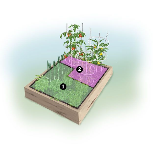 Use this pizza garden plan to grow fresh ingredients for homemade pizza. What better way to get kids to eat their veggies than putting them on pizza?
