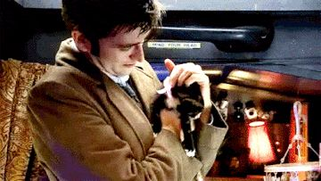 12 Pieces Of Proof David Tennant Is A Crazy Cat Lady