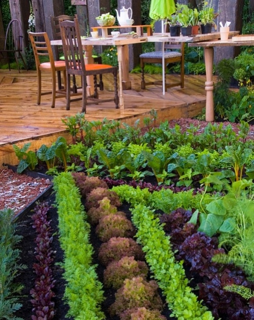 17 Best Images About Beautiful Vegetable Gardens On 640 x 480