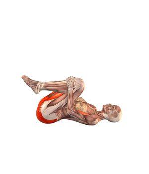 #PAVANAMUKTASANA Knee press, both legs | YOGA.com