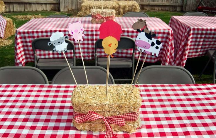 Barnyard Bash Birthday Party Ideas | Photo 8 of 40 | Catch My Party