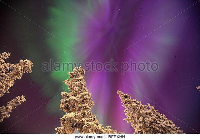 Aurora Borealis or Northern Lights, Yukon. - Stock Image