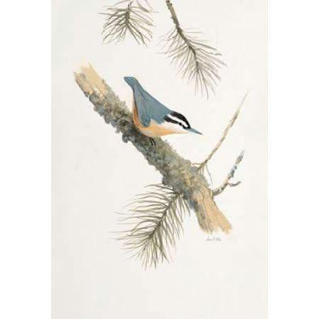 Bird in Grey Canvas Art - Arnie Fisk (20 x 28)