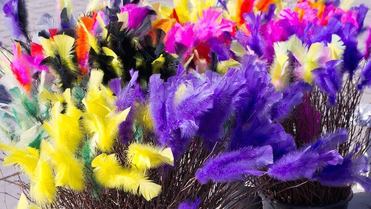 Därför ska du INTE använda påsk-fjädrar. Do NOT use Bird Feathers. Feathers are plucked from birds (alive) in a painful way.. Organisationen Djurens rätt uppmanar oss att tänka en extra gång innan vi smyckar påskriset. Många fjädrar kommer från plockning av levande fåglar – vilket innebär stort lidande för...