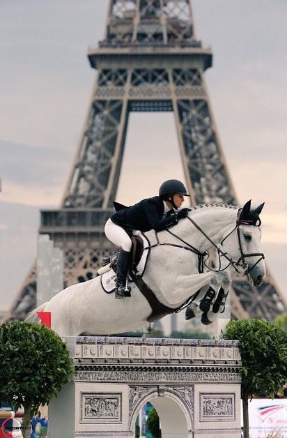 ridingonthewildside:grand-prix:Georgina Bloomberg and Juvina; Paris 2014Goals…. Goals so hard man.