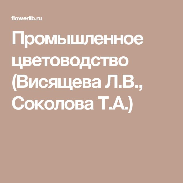 Промышленное цветоводство (Висящева Л.В., Соколова Т.А.)