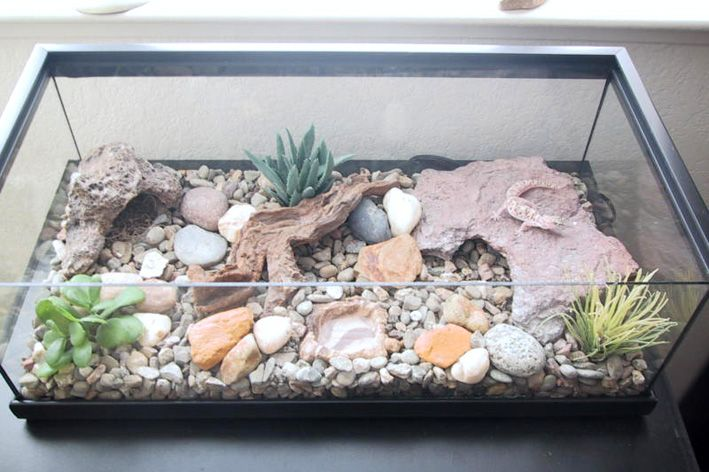 Wow that is a lovely tank! I currently house my #leopardgecko on paper towel, because sand substrate is evil. This is definitely something that would look better--wonder how hard it is to clean though...