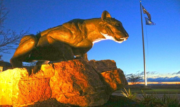 Pitt-Johnstown Mountain Cat at dawn
