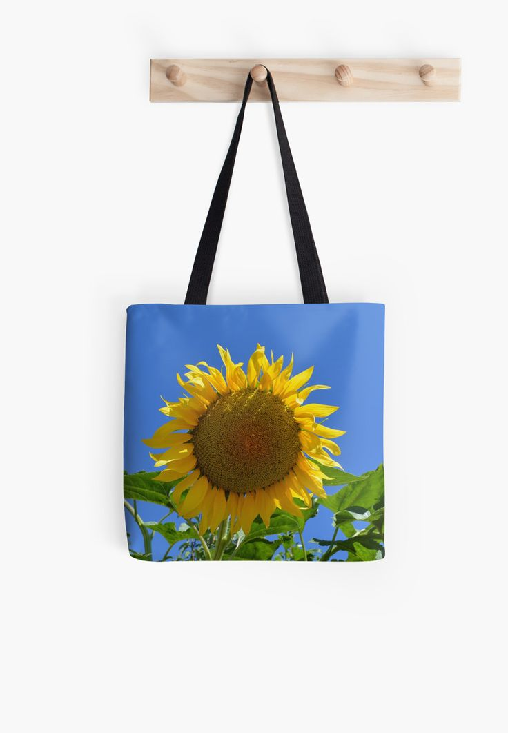 Sunflower by Stock Image Folio