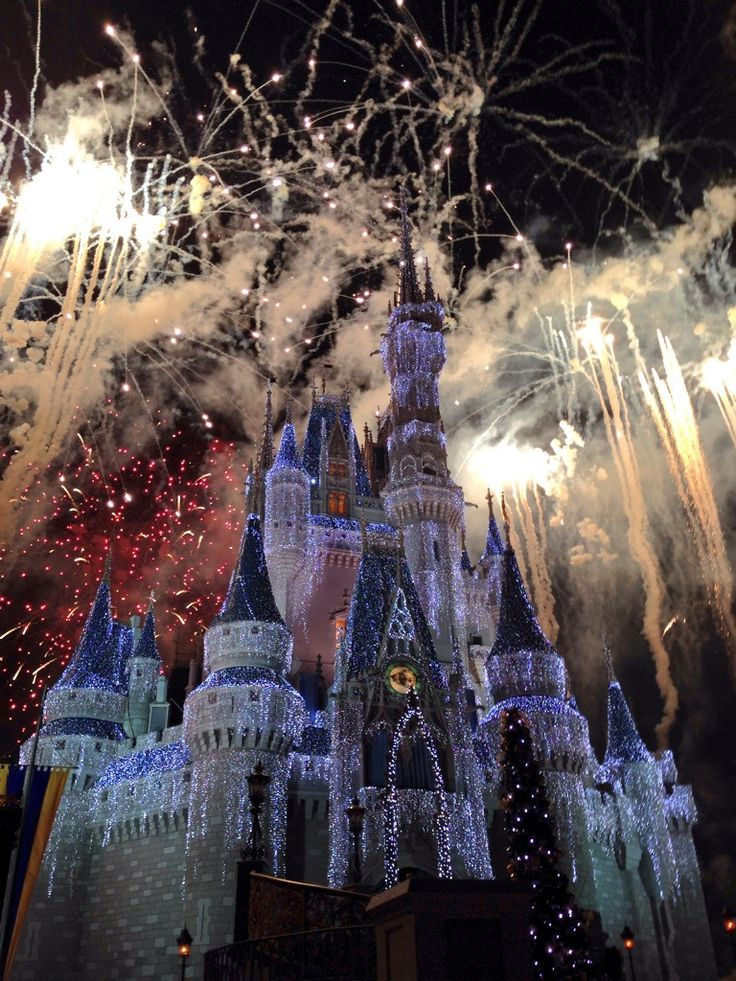 I want to go to disney land.  I have never been there before and want to go there one day.