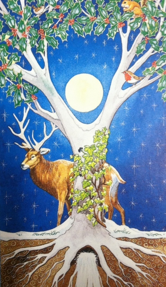 Numerous traditions connect the three Solstice plants. The Holly and the Ivy have a curious rivalry throughout the year and especially at the solstice. Holly was seen as a male plant with bright red berries and sharp, prickly leaves, The Ivy, clinging and gentler, was perceived to be female.