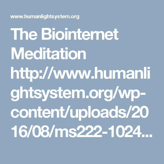 The Biointernet Meditation http://www.humanlightsystem.org/wp-content/uploads/2016/08/ms222-1024x628.jpg