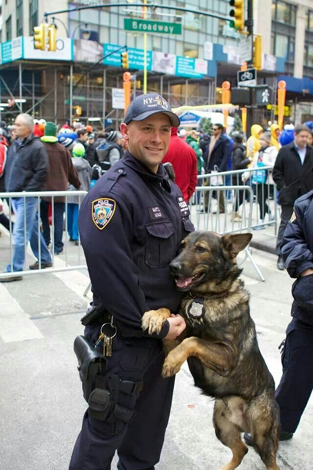 58 best NYPD images on Pinterest Police, Law enforcement and - k9 officer sample resume