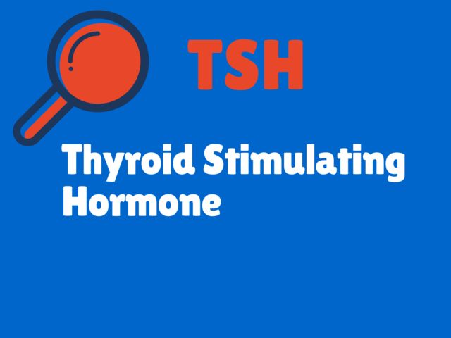 What Do Your Thyroid Blood Test Results Mean?: TSH - Thyroid Stimulating Hormone - Thyroid Tests