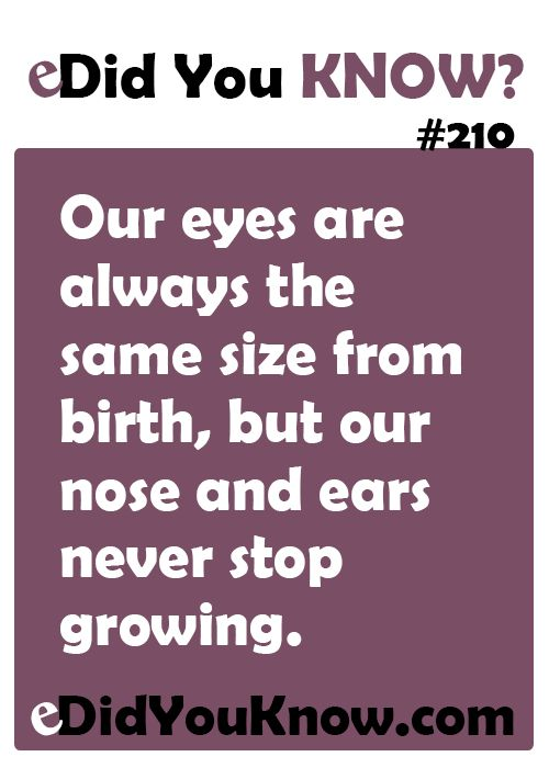 Our eyes are always the same size from birth, but our nose and ears never stop growing. Always had the big semi-creepy doe eyes. Strange Facts ...