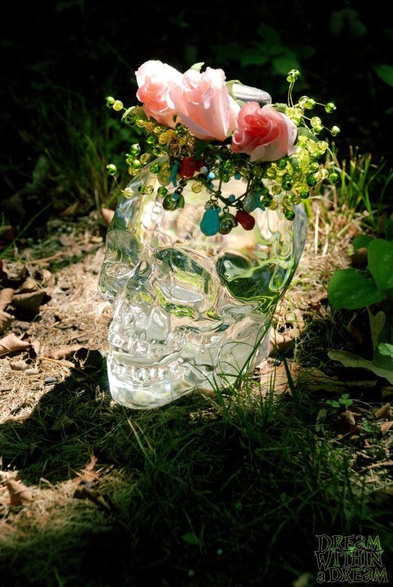 I have this skull, its an expensive crystal head vodka bottle...okay maybe $50 isn't a lot for some people to spend on alcohol. I still haven't opened mine and I've had it for months. I wanted the bottle but don't know what you do with vodka.
