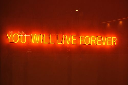 Tim Etchells neon art piece. Saw this in Palm Springs and stuck with me.