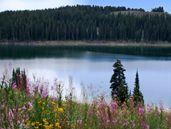 Grand Mesa Area, Colorado, Colorado Vacation Directory