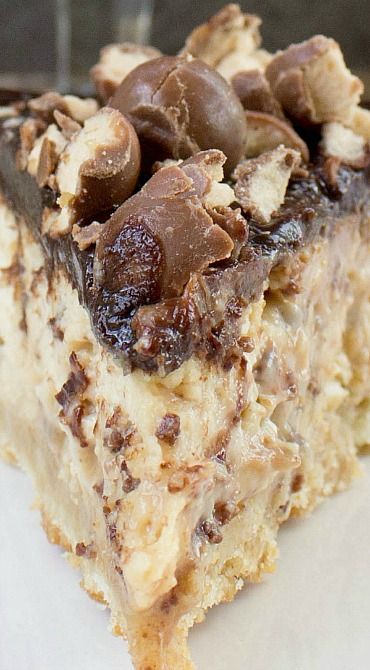 Malted Cheesecake ~ Thick creamy malted cheesecake jam-packed with malted milk ball bits is baked over a malted shortbread crust and blanketed with dark chocolate ganache then topped with a sprinkling of crushed malted milk balls