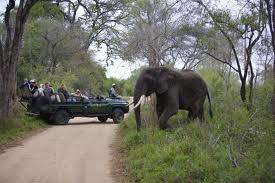 Safari in an open jeep at Kapama Karula River Lodge, South Africa