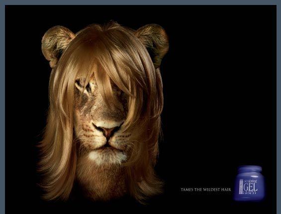 El gel para cabello q hasta el león puede tener una buena vista