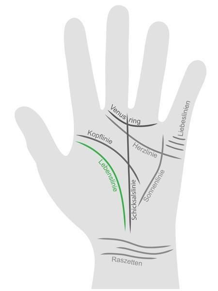 <p/><h2>Handlesen: Lebenslinie</h2><p/><p><b>Zeichen für Vitalität und Lebenskraft</b></p><p>Beim Handlesen zeigt die Lebenslinie die Lebenskraft und Vitalität eines Menschen an. Ein breiter Verlauf weist zum Beispiel auf einen abwehrstarken Körper hin, d
