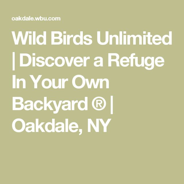 Wild Birds Unlimited | Discover a Refuge In Your Own Backyard ® | Oakdale, NY